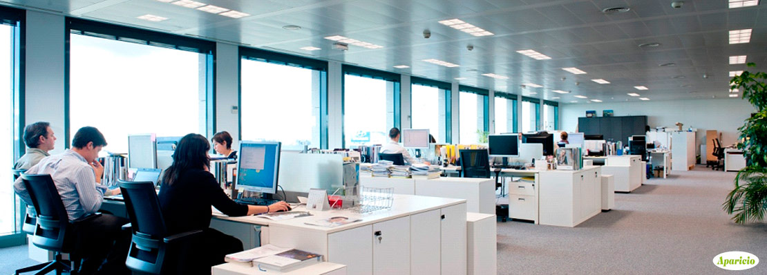 desinsectación en una oficina
